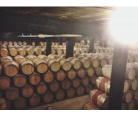 Visita al Castell de Perelada